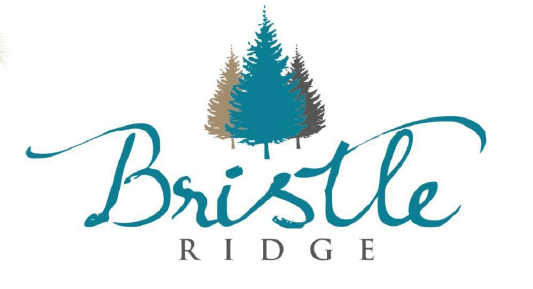 Bristle Ridge Baguio Logo